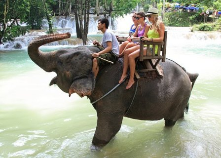 elephant-ride-laos-05