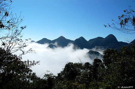 Mai chau top hill