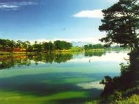Private Dalat Tour Package